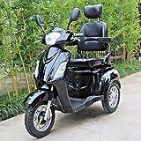 Green Power Scooter electrico de Movilidad Reducida Triciclo/Scooter Nuevo...