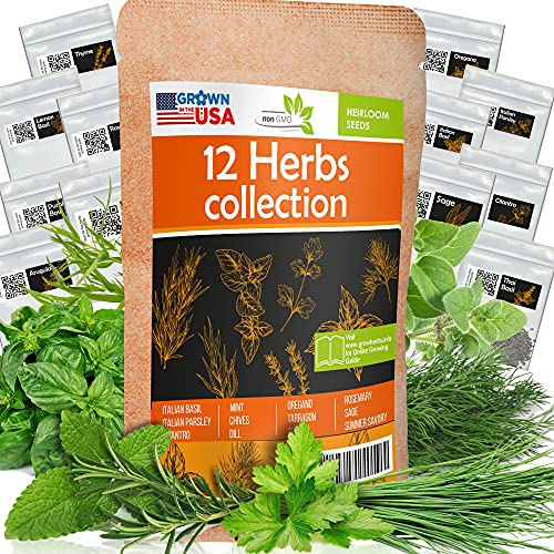12 Culinary Herb Seeds Pack - Heirloom and Non GMO, Grown in USA - Indoor or...
