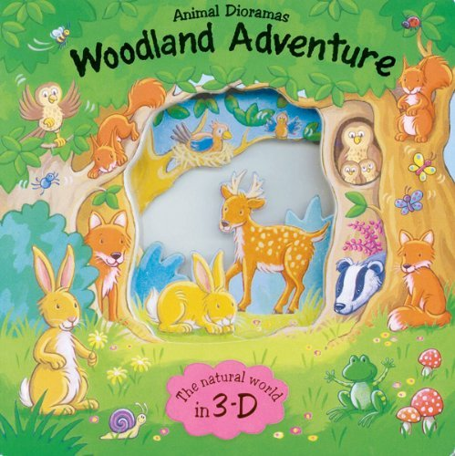Woodland Adventure (Animal Dioramas) by Debbie Rivers-Moore (2012-02-01)