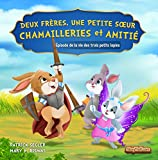 Deux frères, une petite sœur – Chamailleries et amitié: Épisode de la vie des trois petits lapins (Livres de valeur pour enfants t. 3)