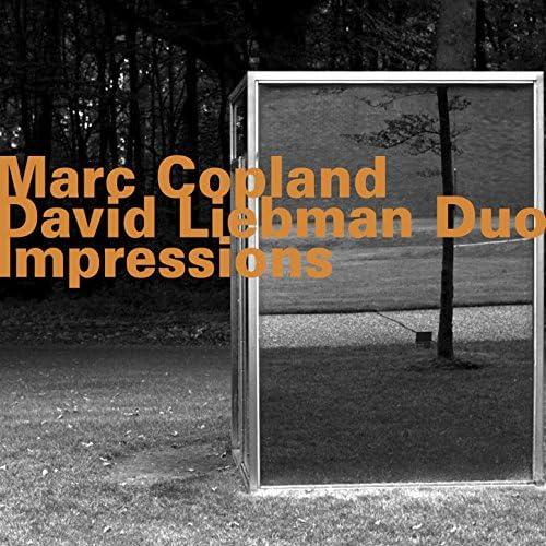 Marc Copland & David Liebman