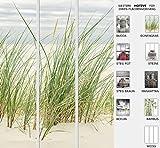 EFIXS 3er Set Flächenvorhang - Motiv Duenengras - halbtransparent und lichtdurchlässig - Paneelbreite: 60 cm x H: 245 cm - Gesamt 180 x 245 cm - incl. Flauschband, Paneelwagen und Beschwerungsprofil