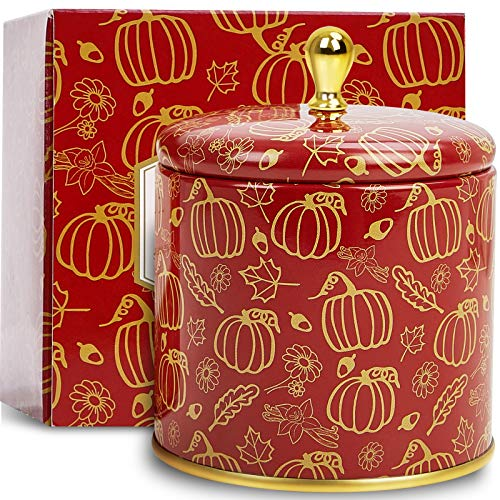 Leize Fall Candles Pumpkin Cinnamon Scented Candles 100% Soy Candles for Home Highly Scented Holiday Candles Gifts for mother lovers Home Decoration 50 Hours Long Burning
