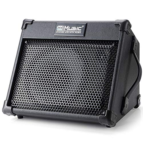 Why Should You Buy Acoustic Guitar Amplifier, 40 Watt Portable Rechargeable Amp for Guitar Acoustic ...