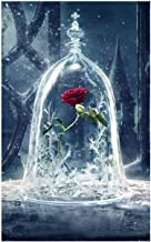 Shayee DIY 5D Diamond Painting Kit, Roses in Glass Dome Rhinestone Embroidery Cross Stitch Arts Craft Canvas for Home Wall...