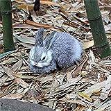 KAIGE 15CM Mini Conejos Lindos/Chicas Juguetes de Peluche Animal Pascua Conejito Realista de simulación de Conejo Modelo de Juguete de Regalo de cumpleaños (Color: con Estilo alas) WKY (Color : Gray)