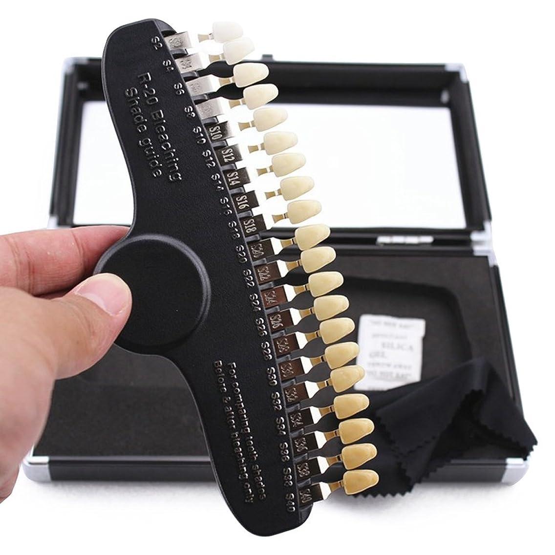 音楽家ソビエト許可するPochiDen 歯科ホワイトニング用シェードガイド 20色 3D 歯列模型ボード