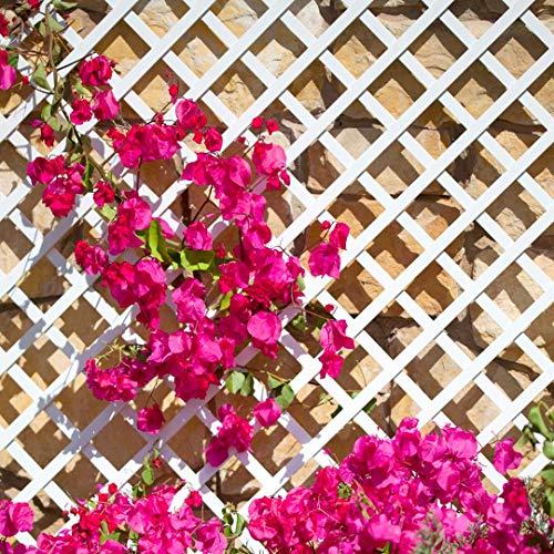 Celosia Pvc 48 Mm Panel Para Valla Jardin en varios colores