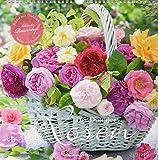 Der Duft der Rosen 2020 - mit Duftlack - Bildkalender (33 x 33) - Roses - Blumen - Wandkalender - ALPHA EDITION