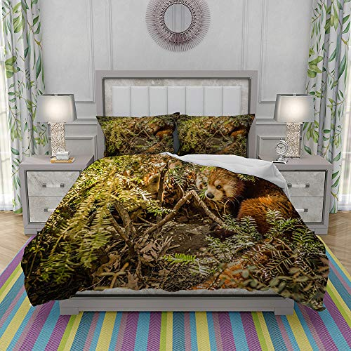 REIOIYE Duvet Cover Set-Bedding,Red Panda Hiding And Resting In Foliage,Quilt Cover Bedlinen-Microfibre 200x200cm with 2 Pillowcase 50x80cm
