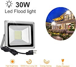 Younar 30W LED Flood Light ,2400lm Super Bright Security Lights, 6000K Daylight White, IP65 Waterproof Outdoor Landscape Floodlight with US-3 Plug for Lawn, Playground, Yard, GardenGarage(110 V)