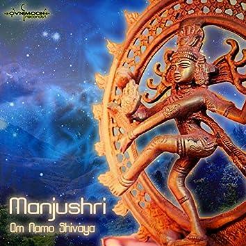 Om Namo Shiva