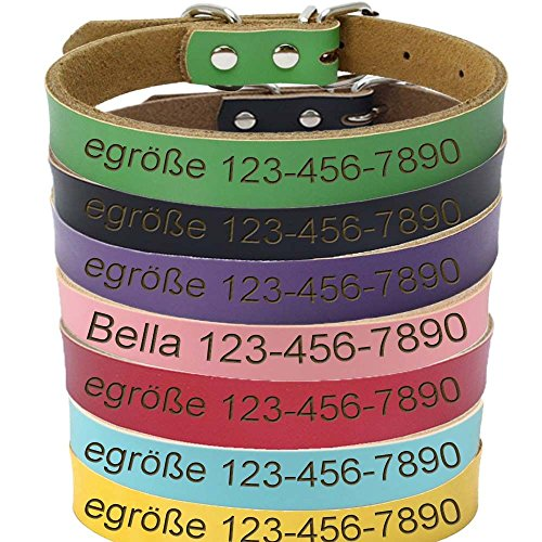 vspg Hundehalsband Gravur Leder Mit Namen Und Telefonnummer Individuell Gestalten