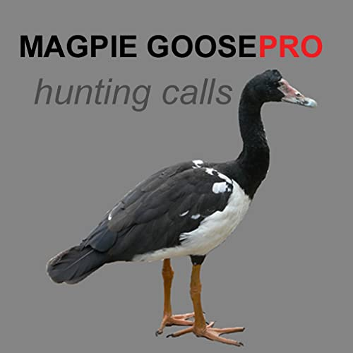 REAL Magpie Goose Calls - Hunting Calls for Magpie Geese (ad free) - BLUETOOTH COMPATIBLE