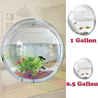 creative betta fish bowl ideas