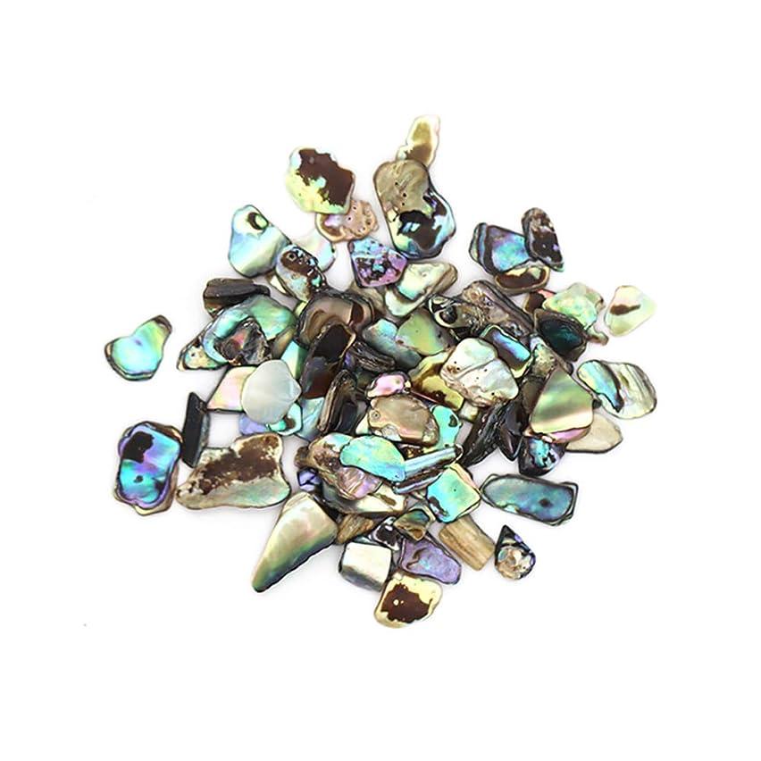 タオルペダルキャリッジニュアンスシェルストーン 約4g ナチュラルストーン 偏光 立体パーツ 天然石 ネイルアート シェルストーン クラッシュシェル ブロックシェル