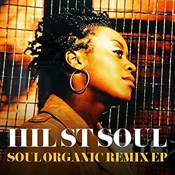 Soul Organic (Remix EP)