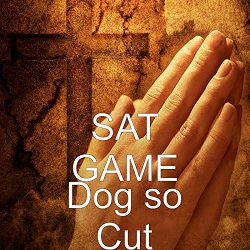 Sat Game