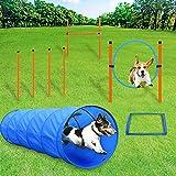 Tresbro Agility para perro, kit obstáculo, túnel para perro, bastones tejidos de Agilidad, Slalom, anillo salto, entrenamiento al aire libre
