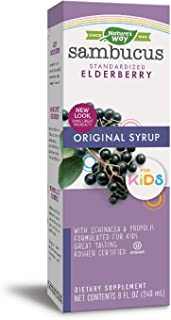Nature's Way Sambucus for Kids Syrup, Standardized Elderberry, Berry Flavor, 8 Fluid Ounces, Gluten-Free, Kosher Certified (Packaging May Vary)
