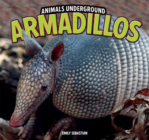 Armadillos (Animals Underground)