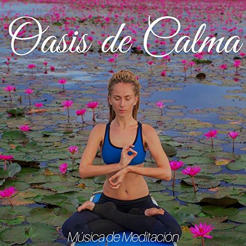 Oasis de Calma: Música de Meditación, Técnicas de Relajación, Viaje Espiritual New Age, Armonía y Equilibrio