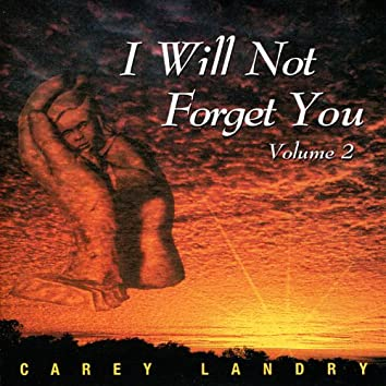 I Will Not Forget You, Vol.2