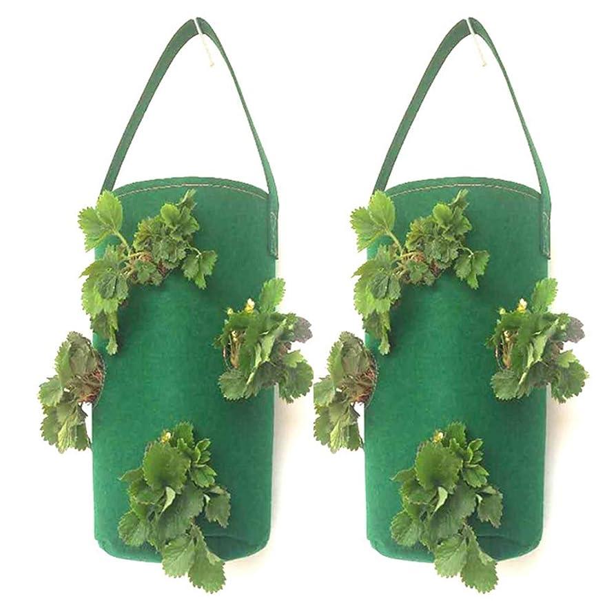 入射スープぜいたく8ホールポテトストロベリープランターバッグ用成長するジャガイモ屋外垂直庭吊りオープン野菜植栽成長バッグ,グリーン