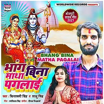 Bhang Bina Matha Pagalai
