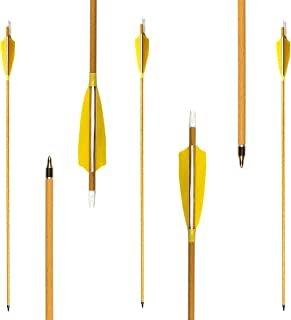 Letszhu Archery Carbon Arrows 500 Spine Real Feather Fletching with Changeable Field Points for Hunting Target Shooting (Pack of 6)