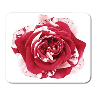 Mouse Pads Bouquet Beautiful White Red Rose Flower on with Clipping Path No Shadows Closeup Nature Beauty Color Mouse Pad for Notebooks,Desktop Computers Office Supplies 10x12 inch