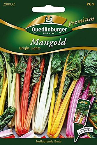 Mangold, Bright Lights