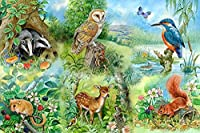 ジグソーパズル300ピース- Shimaierレトロおとぎ話面白い野生動物ジグソーパズルフェリー 子供の誕生日プレゼント女の子へのサプライズギフト大人のジグソーパズル芸術パズル家の装飾