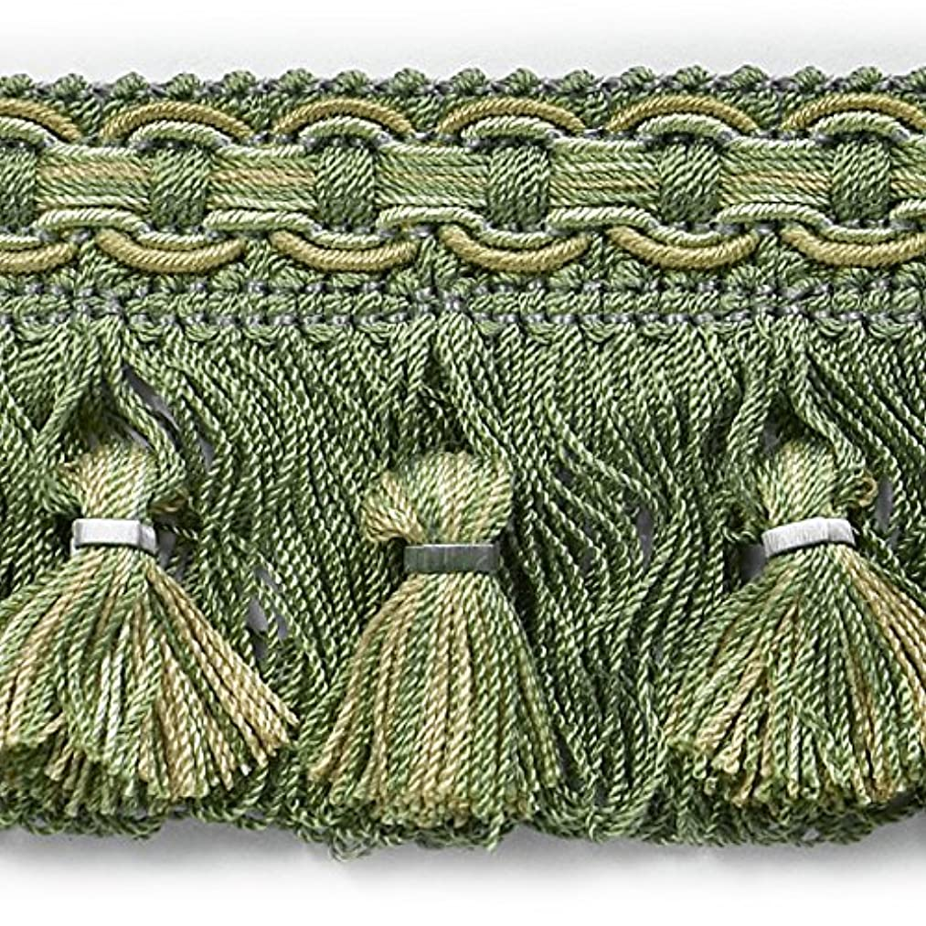 Expo CN07923T1608-13 13 Yards of Conso Tassel Fringe Trim Sage Multi