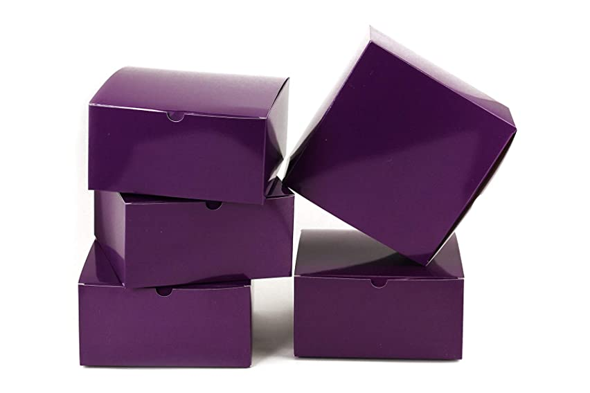 Tytroy Purple Paper Gift Boxes with Lids Tuck Top Craft Box Bakery Box (10 pc)