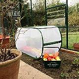 GardenSkill - Copertura per piante per orti, serre, aiuole, con rete antiinsetti, protezione per carote, cipolle, erbe, frutta e verdura   1,1 x 0,45 x 0,55 m