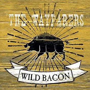 Wild Bacon