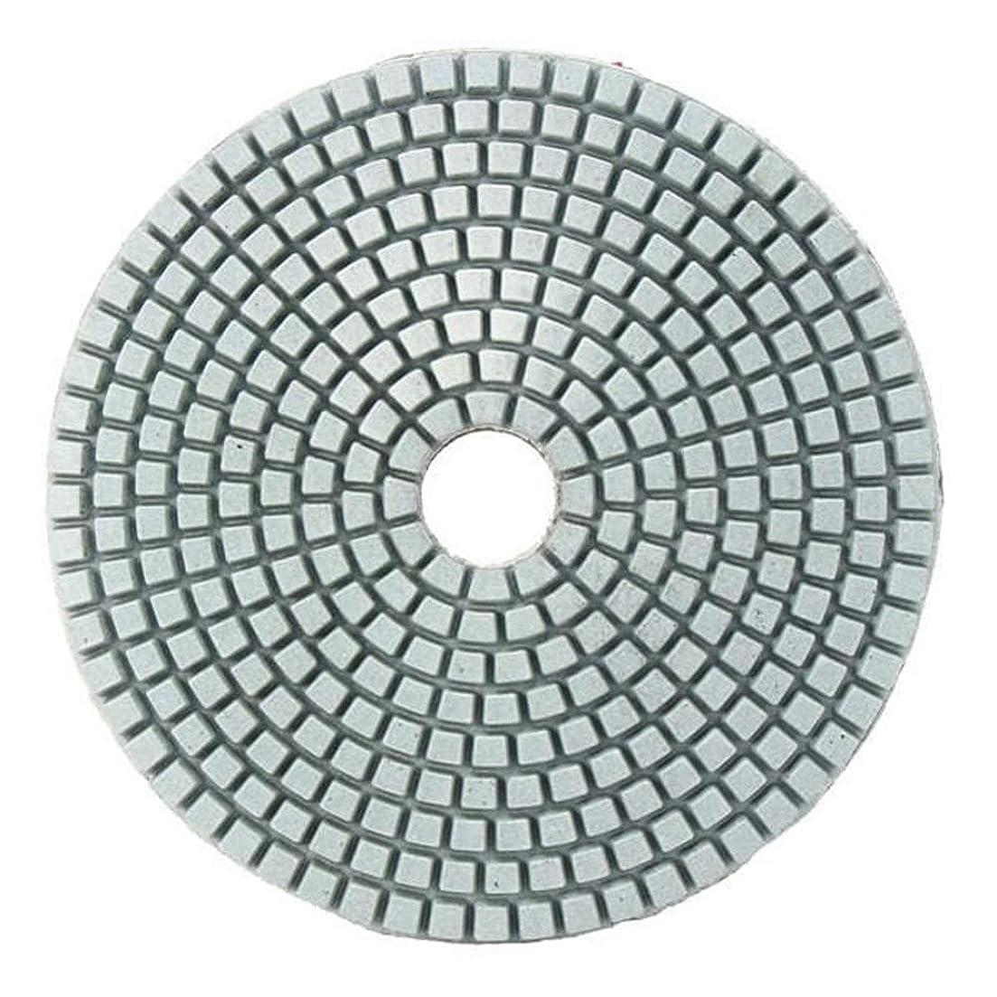 固執スーパー頂点研磨剤、 5インチ50-6000グリットダイヤモンド研磨パッド大理石コンクリート花崗岩ガラス用ウェットドライサンディングディスク (サイズ : 100#)