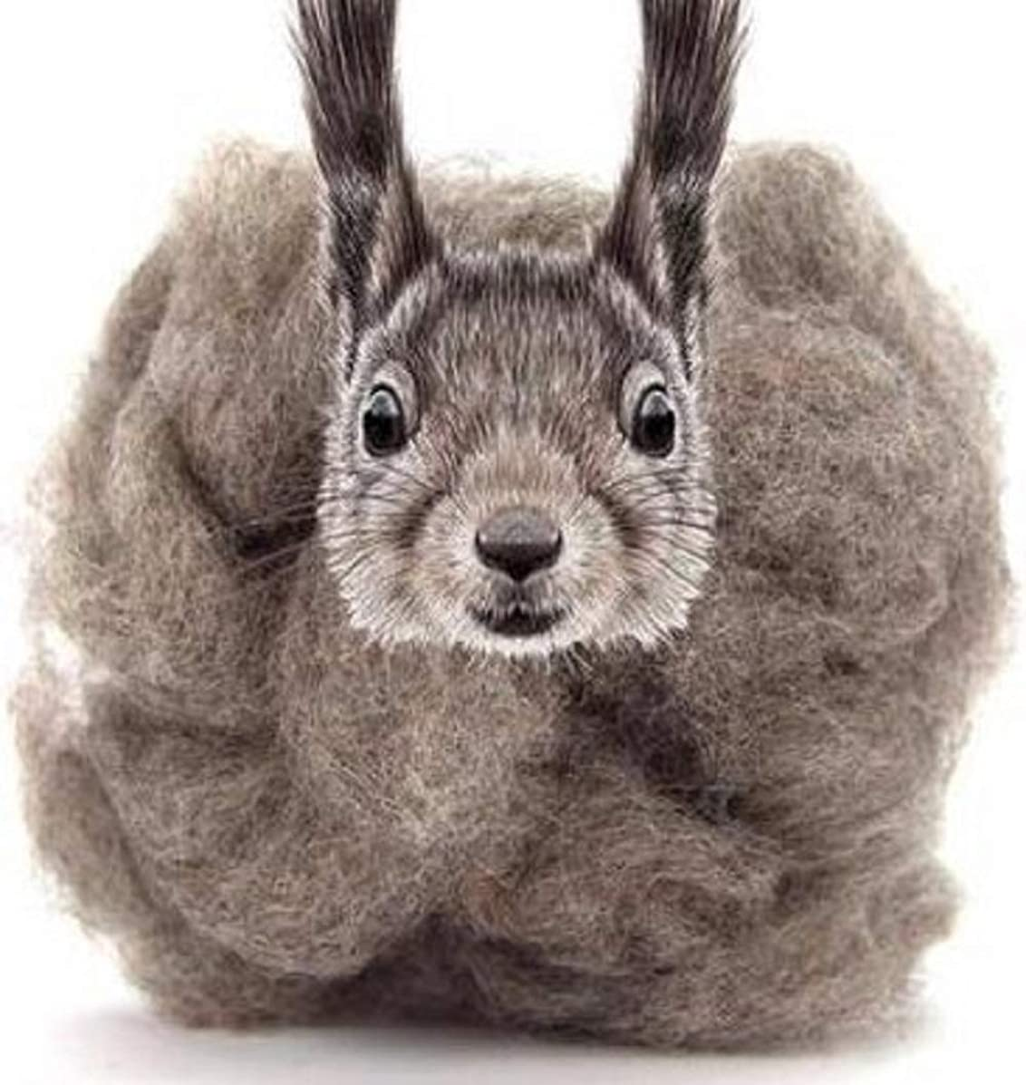 4 oz Paradise Fibers Carded Corriedale Wool Sliver - Squirrel Gray - Perfect for Woolen Yarn & Needle Felting