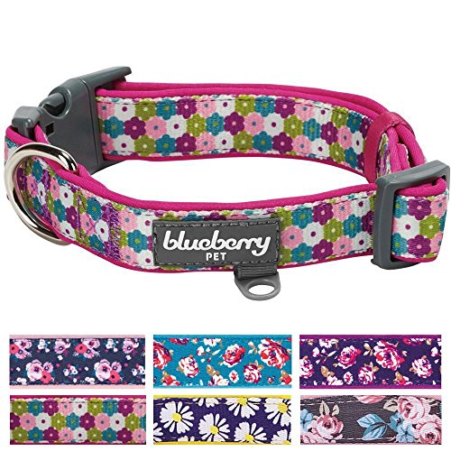 Blueberry Pet Soft & Comfy Endless Valentine Floral Print Designer Adjustable Neoprene Padded Dog Collar, Medium