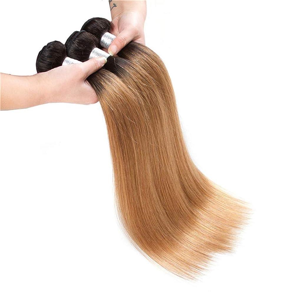 凍るコールドるHOHYLLYA 100%のremy人間の髪のよこ糸の延長10インチ26インチ1バンドルカラー1B / 27黒から茶色への2色カラーブラウンかつらロングブラウンかつらかつら (色 : ブラウン, サイズ : 18 inch)
