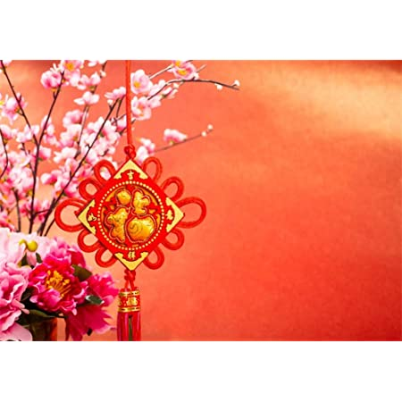 7x10 FT Chinese New Year Vinyl Photography Backdrop,Flower with a Celebration Phrase in Pink Shades Tradition Background for Baby Birthday Party Wedding Graduation Home Decoration