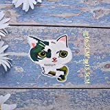 iron on patch,parches para ropa,Aplique de bordado, utilizado para decorar ropa para reparar agujeros en la ropa, gran gato verde y blanco 1p
