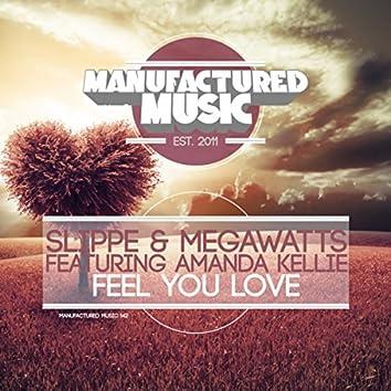 Feel You Love