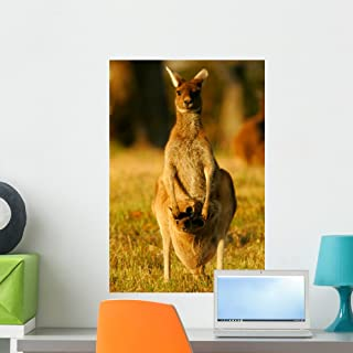 Wallmonkeys Western Grey Kangaroos Wall Decal Peel and Stick Graphic WM50664 (24 in H x 16 in W)