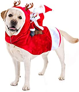 Best dog in christmas outfit Reviews