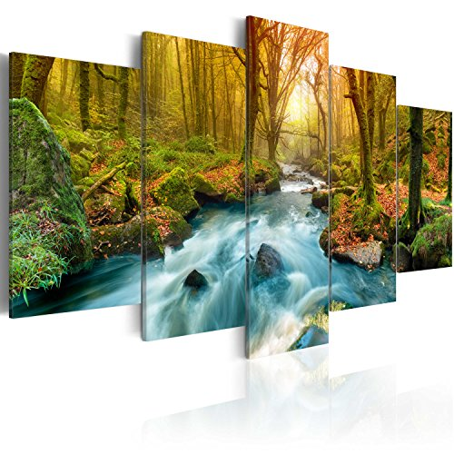 murando - Cuadro en Lienzo 200x100 cm Impresión de 5 Piezas Material Tejido no Tejido Impresión Artística Imagen Gráfica Decoracion de Pared Naturaleza Cascada c-A-0004-b-a
