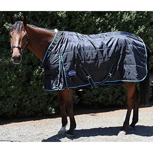 Burgundy And Navy All Sizes Jhl Essential Medium 200g Unisex Horse Rug Turnout