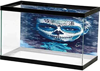 Aquarium Poster, Sugar Smile Decor, Santa Muerte Concept Winter Ice Cold Snowflakes Frozen Dead Folkloric, Multicolor, 24