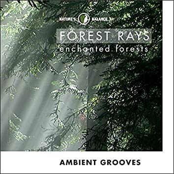 Forest Rays: Ambient Grooves